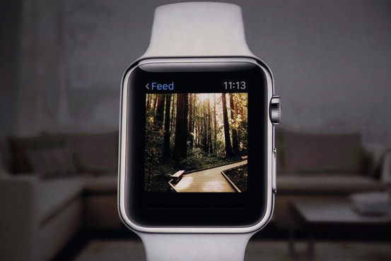 Instagram Apple Watch App